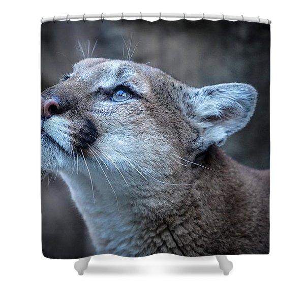 Beautiful Puma Shower Curtain