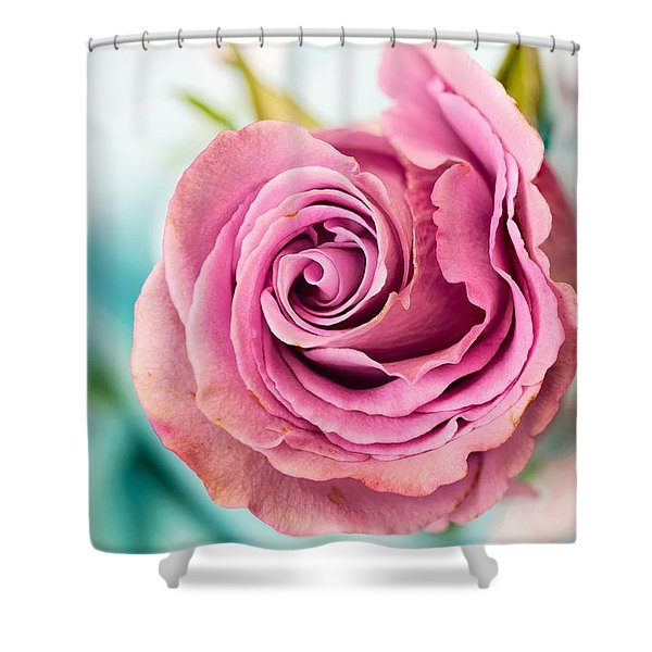 Beautiful Vintage Rose Shower Curtain