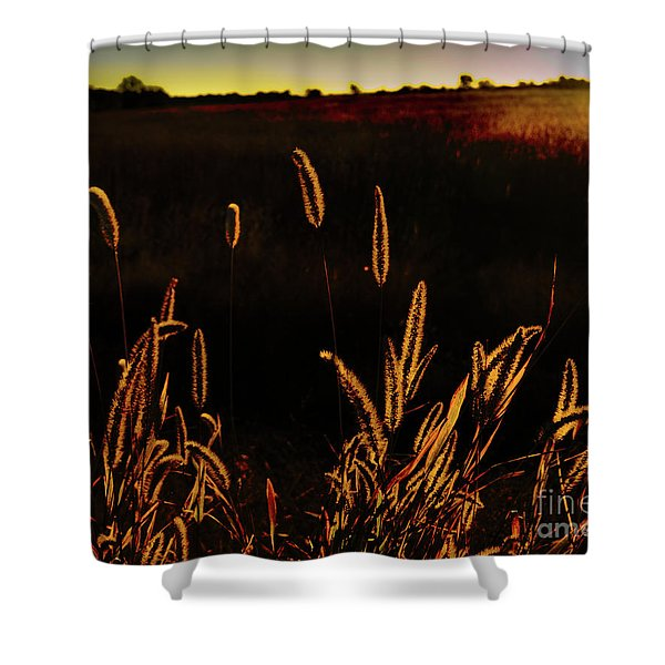 Beauty In Weeds Shower Curtain