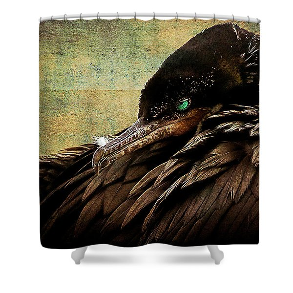 Beauty Is In The Eye -2 Shower Curtain