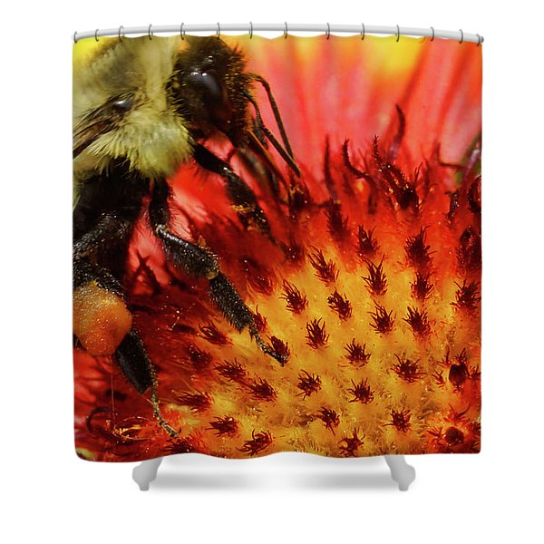 Bee Red Flower Shower Curtain