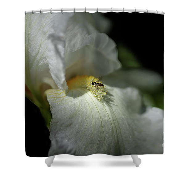Bee Yond The Blossom Shower Curtain
