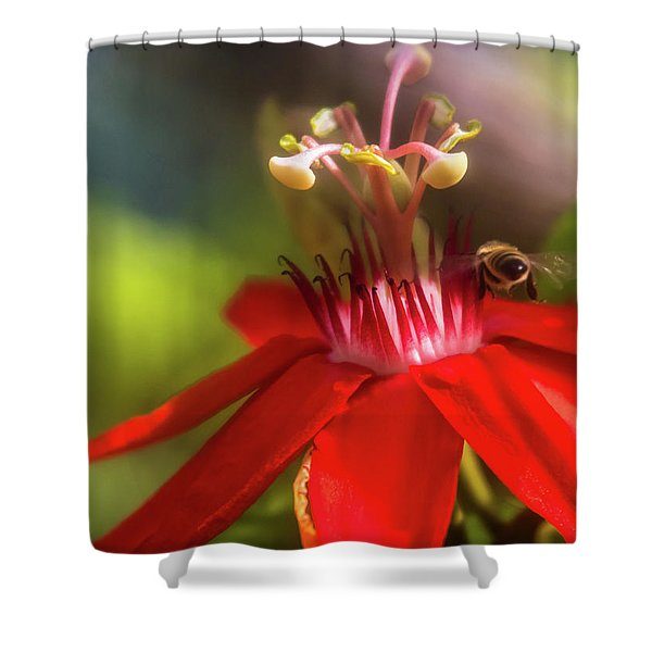 Beeline Movement Shower Curtain