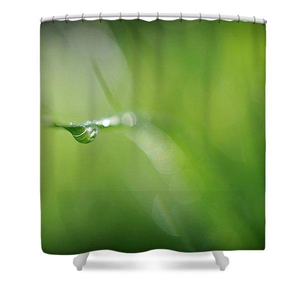 Beneath Shower Curtain