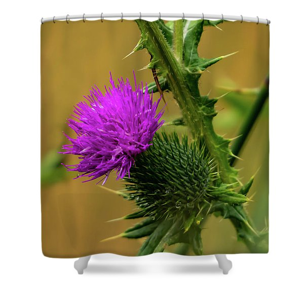 Between The Flower And The Thorn Shower Curtain