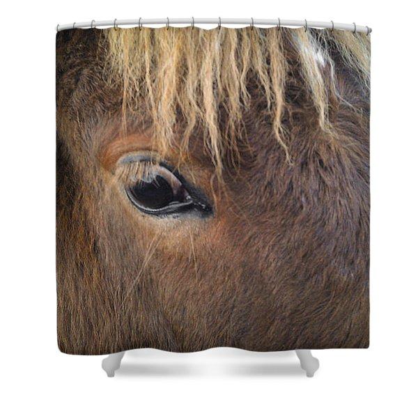 Big Eyes Shower Curtain