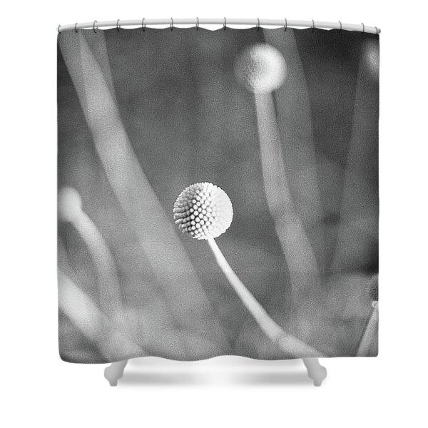 Billy Ball Flowers Shower Curtain