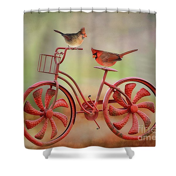 Bird Lovers Spin Around The Block Shower Curtain