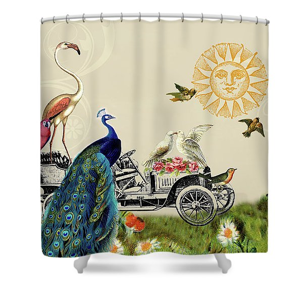 Birds Of A Feather In Paris, France Shower Curtain