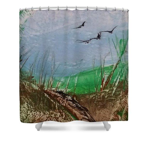 Birds Over Grassland Shower Curtain