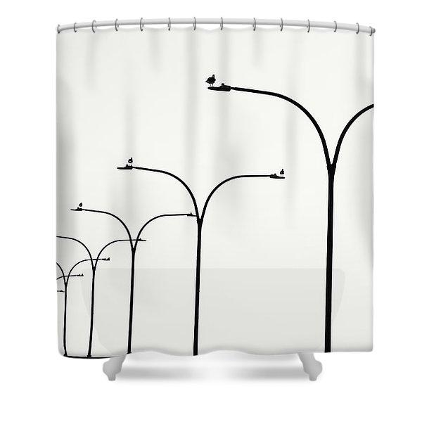 Birds Watch Over Queensway Bridge Shower Curtain