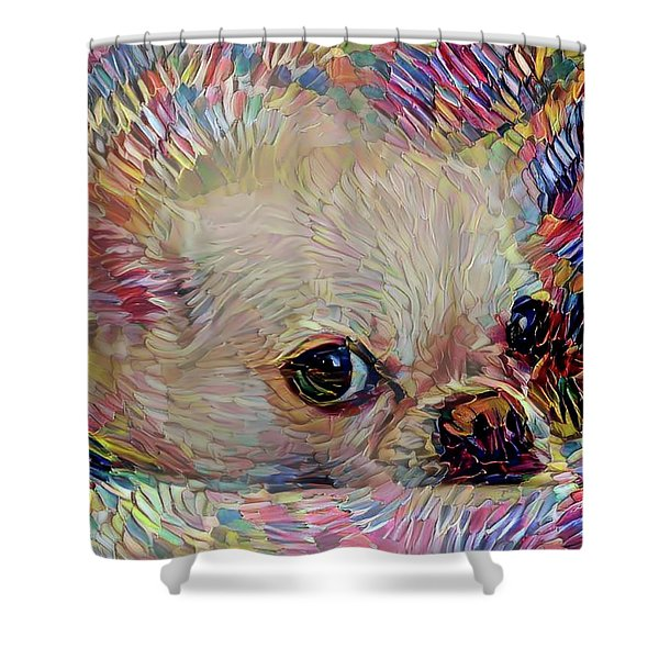 Bitsy The Chihuahua Shower Curtain