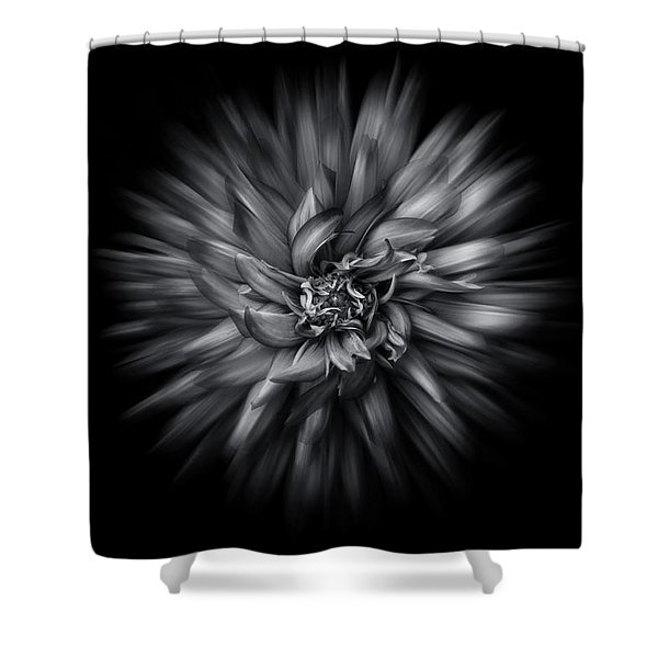 Black And White Flower Flow No 5 Shower Curtain