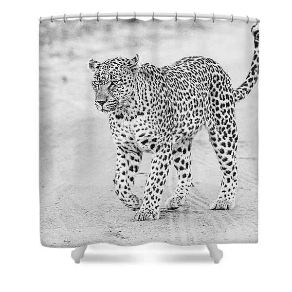 Black And White Leopard Walking On A Road Shower Curtain