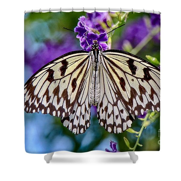 Black And White Paper Kite Butterfly Shower Curtain