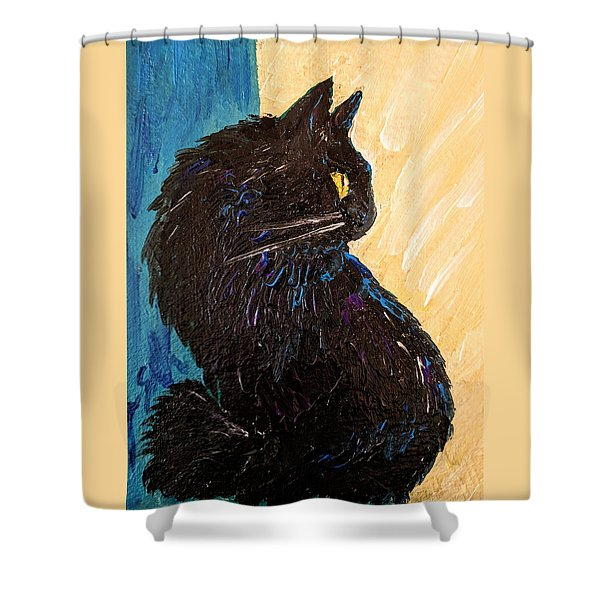 Black Cat In Sunlight Shower Curtain