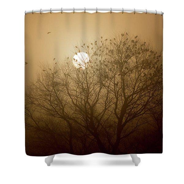 Blackbird Sunrise Shower Curtain