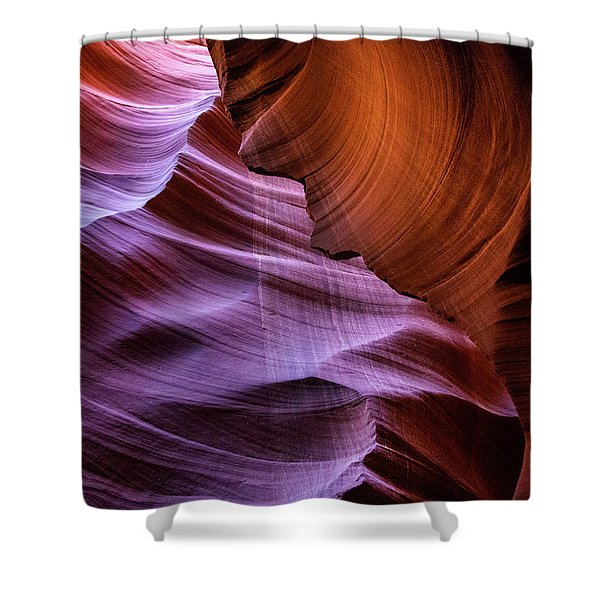The Body's Earth 2 Shower Curtain