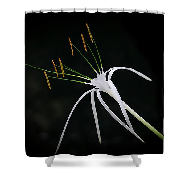 Blooming Poetry 2 Shower Curtain