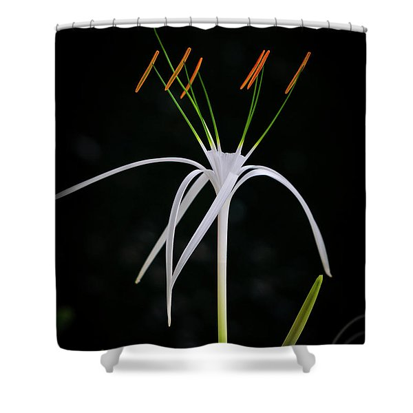 Blooming Poetry 3 Shower Curtain