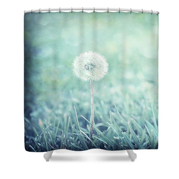 Blue Dandelion Shower Curtain