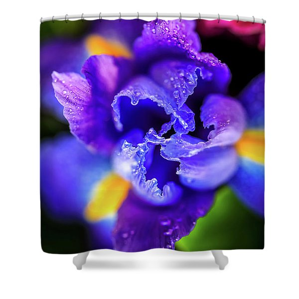 Blue Iris Dance Shower Curtain