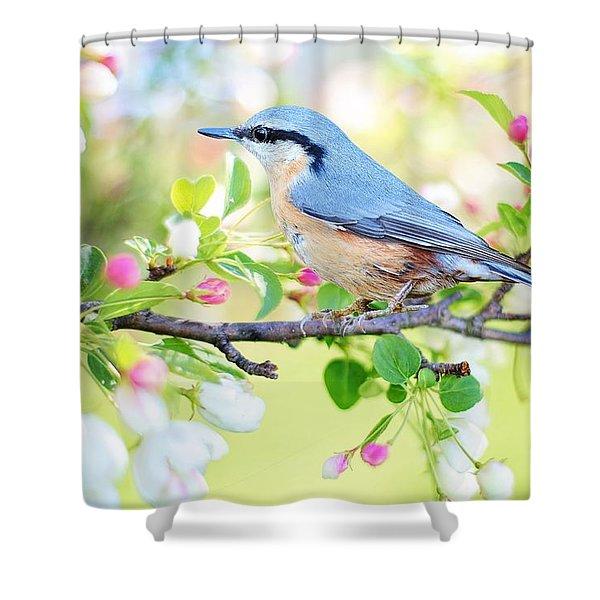 Blue Orange Bird Shower Curtain
