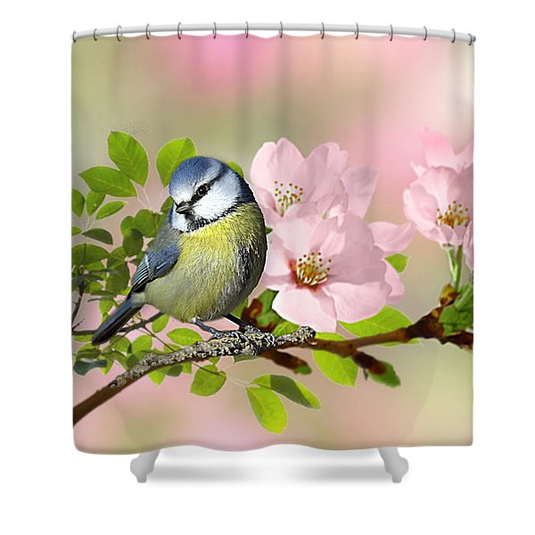 Blue Tit On Apple Blossom Shower Curtain