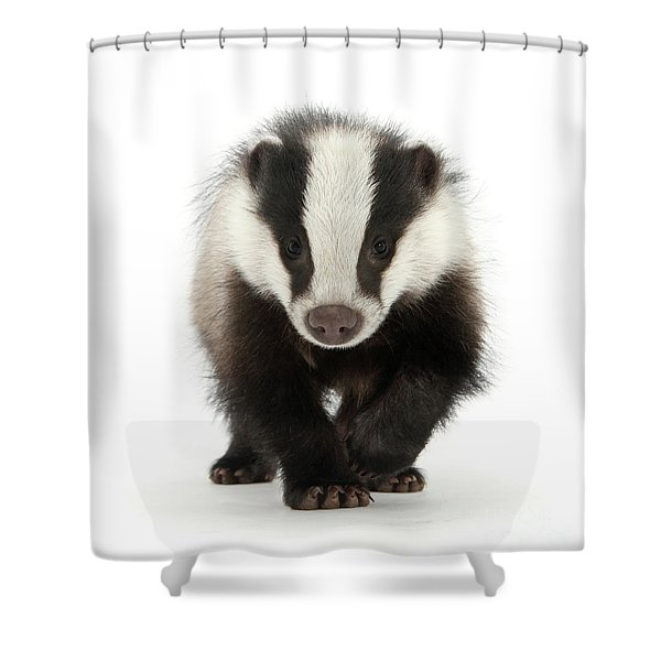 Bodger The Badger Shower Curtain