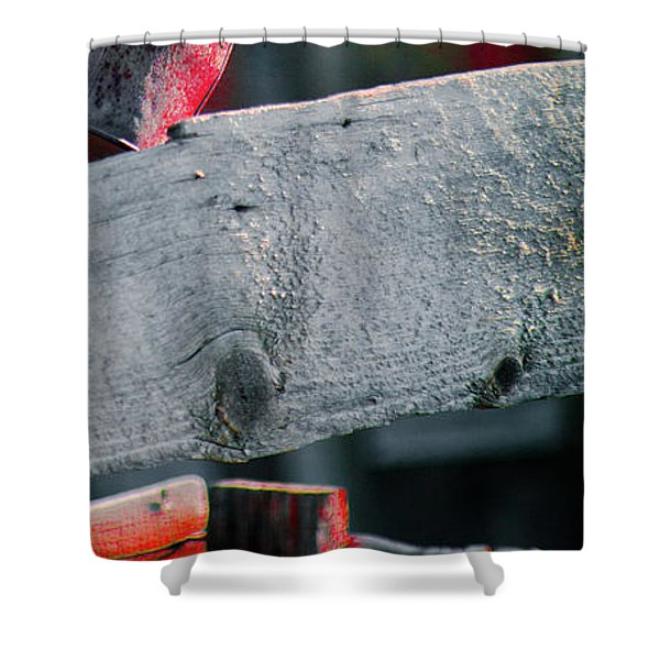 Shower Curtain featuring the photograph Bodie 52 by Catherine Sobredo