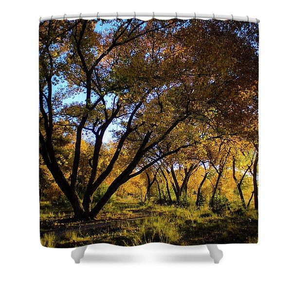 Bosque Color Shower Curtain