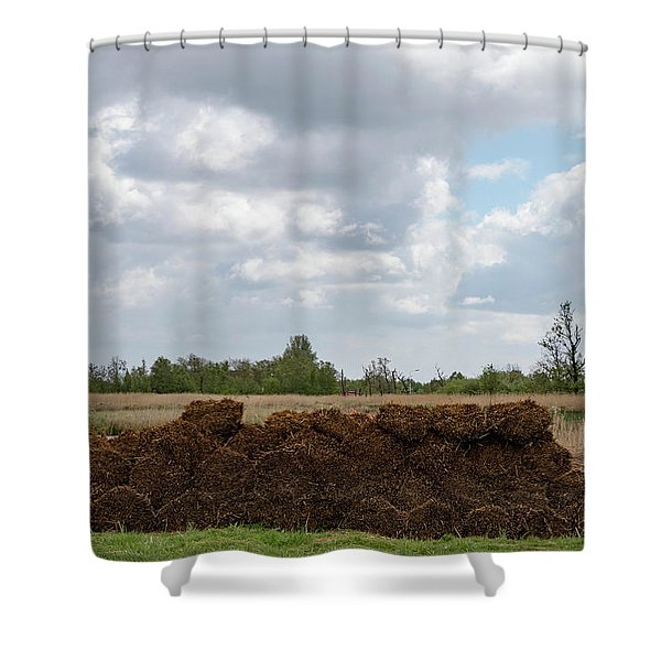 Shower Curtain featuring the photograph Bound Reeds by Anjo Ten Kate