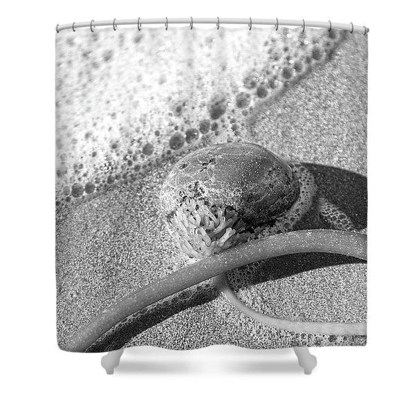 Bowling Ball Beach California Sand Story Shower Curtain