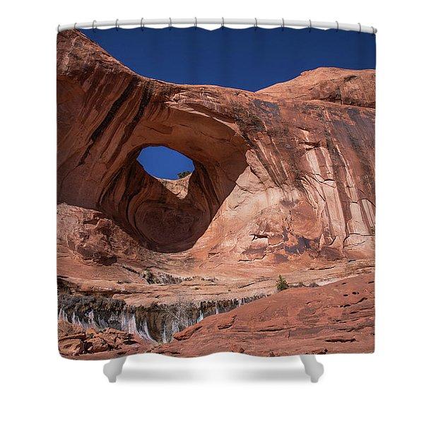 Bowtie Arch Shower Curtain