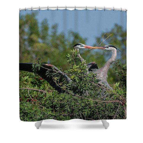 Breeding Herons Shower Curtain