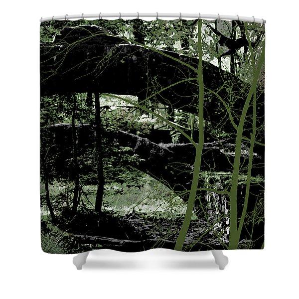 Bridge Vi Shower Curtain