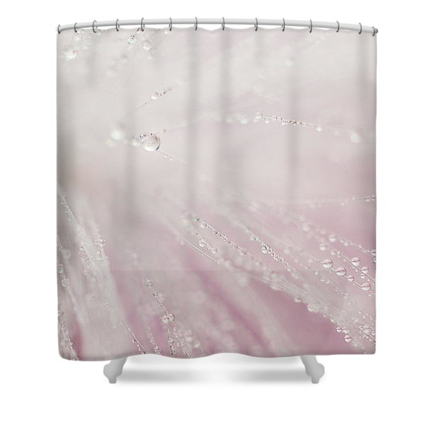 Bright Light Shower Curtain