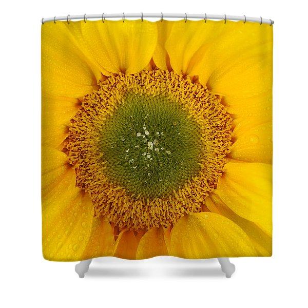 Nature's Sunshine Shower Curtain