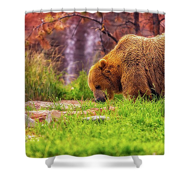 Brisk Walk Shower Curtain