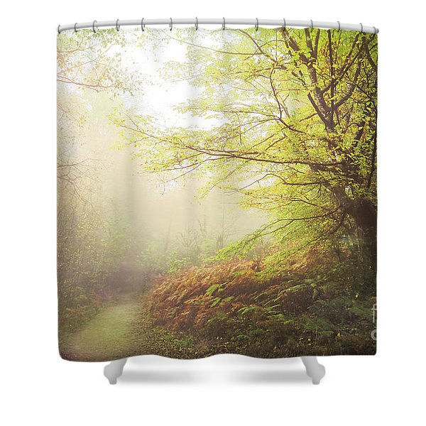 Broceliand Path Shower Curtain