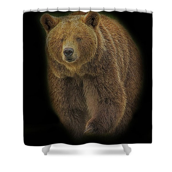 Brown Bear In Darkness Shower Curtain