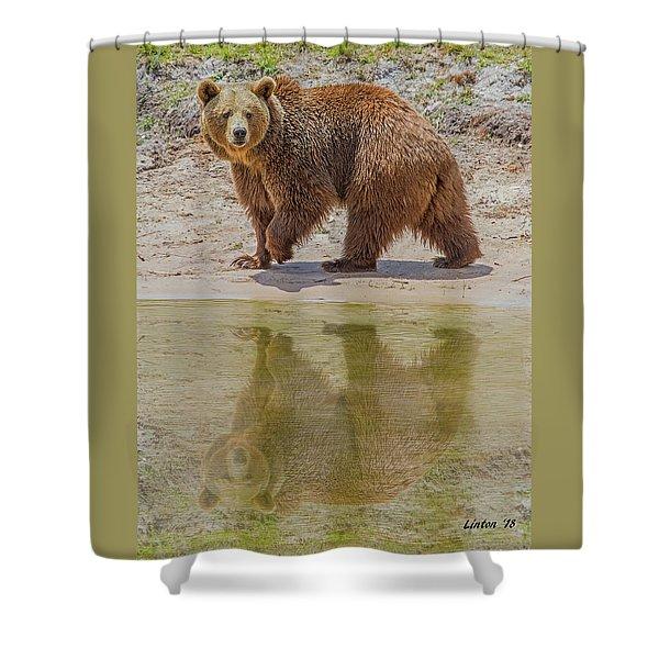Brown Bear Reflection Shower Curtain