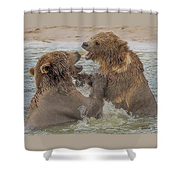 Brown Bears Fighting Shower Curtain