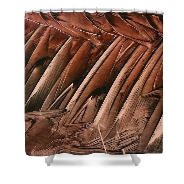 Brown Ladders/steps Shower Curtain