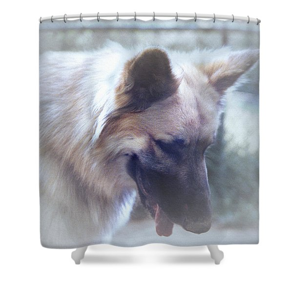 Shower Curtain featuring the digital art Bruce Looking Down by Robert G Kernodle