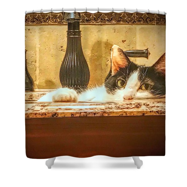 Brush Your Teeth Elsewhere Shower Curtain