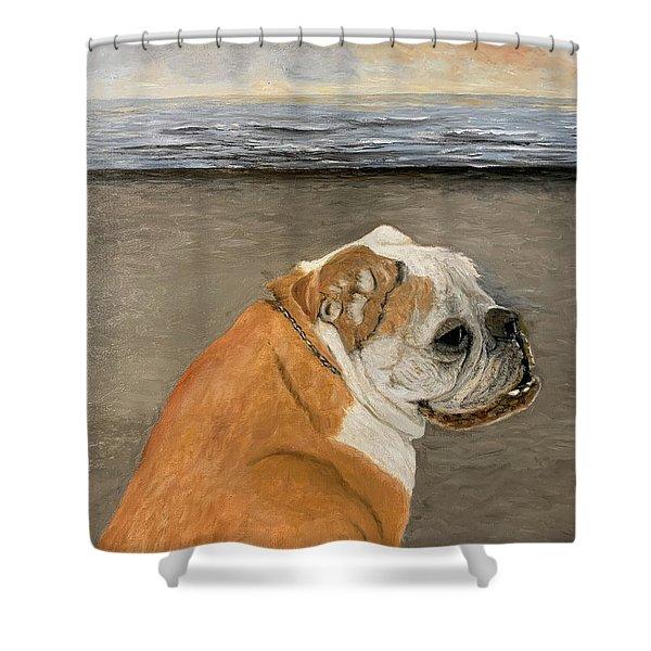 Bulldog  On The Beach Shower Curtain