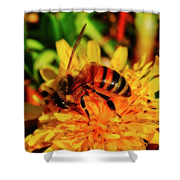 Shower Curtain featuring the photograph Bumble Bee On Yellow Flower by Meta Gatschenberger
