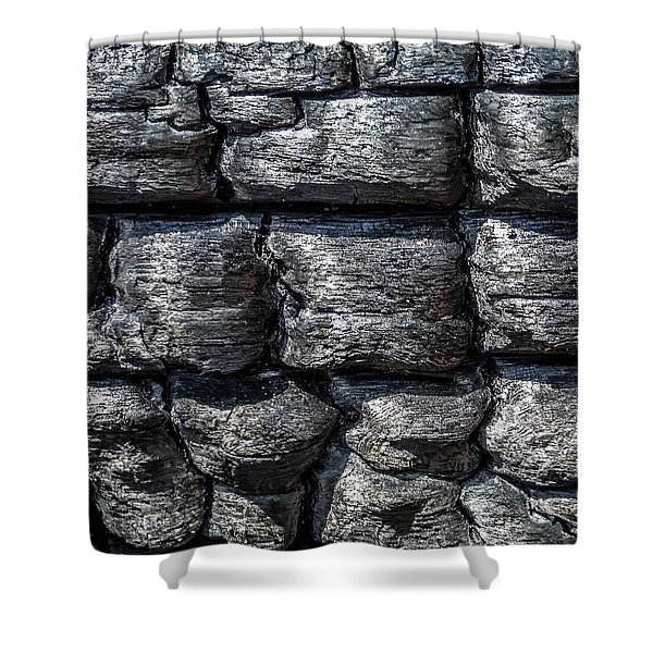 Shower Curtain featuring the photograph Burnt Wood 1 by Dawn Richards
