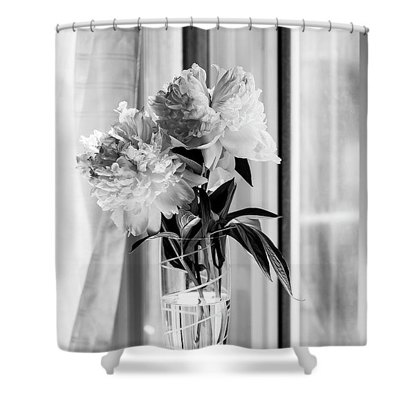 By The Window Shower Curtain